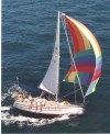 Com-Pac 35 under Spinnaker - Photo of Com-Pac 35 sail boat